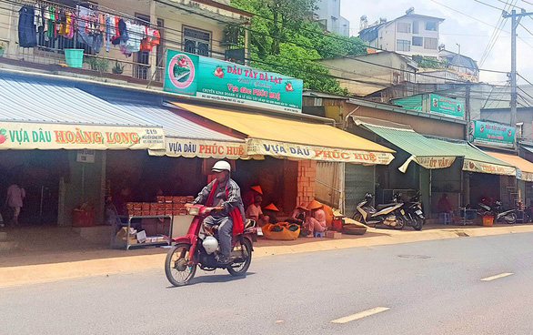 Strawberry stores are seen on Nguyen Cong Tru Street, the focal center of the fruit in Da Lat, Lam Dong Province, Vietnam's Central Highlands. Photo: Lam Thien / Tuoi Tre