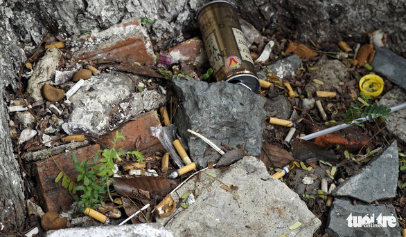 Cigarette butts are left under a tree at Children's Hospital 2 in District 1, Ho Chi Minh City. Photo: Duyen Phan / Tuoi Tre