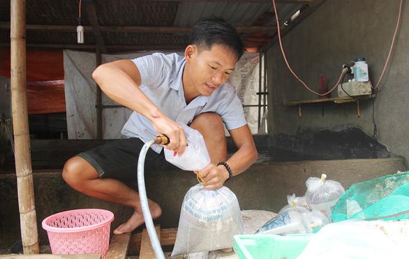 Vietnamese engineer leaves big city behind to found startup in island hometown