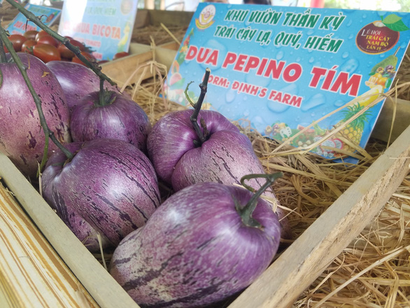 <em>Purple pepinos are sold at the festival.</em>
