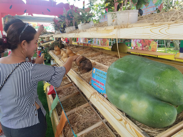 A giant squash originating from the south-central province of Binh Dinh