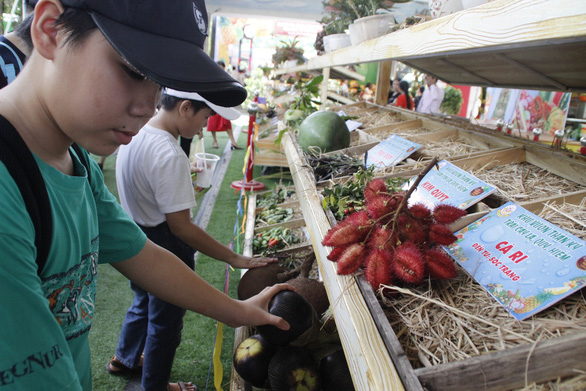 Visitors check out exotic fruits at the event.