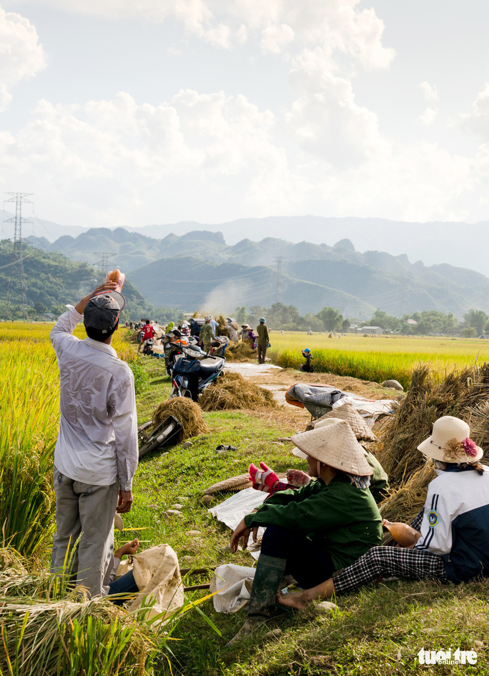 Farmers gather at Muong Tac paddy field during harvesting season. It is also an opportunity for them to gather and talk to each other while they work in the fields. Photo: Nguyen Huong / Tuoi Tre
