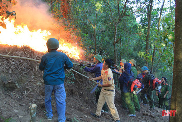 Firefighting force is seen at a forest fire in Ha Tinh, north-central Vietnam, June 28, 2019. Photo: Ha Tinh Newspaper