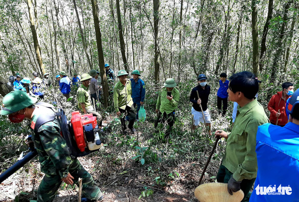 Firefighting force and local residents are seen at a forest fire in Ha Tinh, north-central Vietnam, June 29, 2019. Photo: Ha Tinh Newspaper