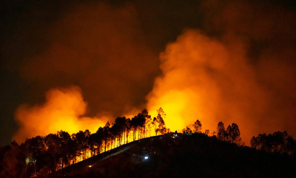 Wildfire erupts in Vietnam's Ha Tinh Province as locals burn tree branches