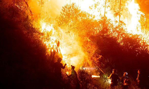 High temperature to increase risk of wildfire in central Vietnam
