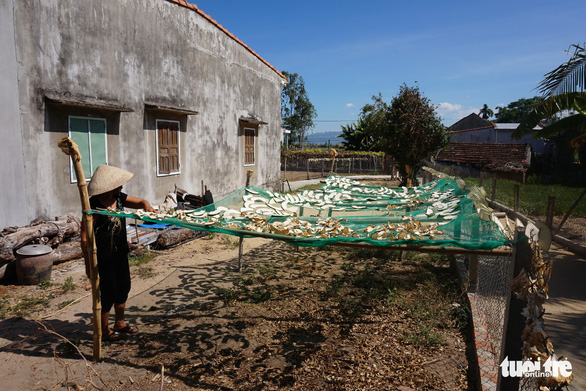 <em>A farmer place slices of giant winter melon on a net for drying in Chanh Trach Village, My Tho Commune, Phu My District, Binh Dinh Province. Photo: </em>Ngoc Diep / Tuoi Tre