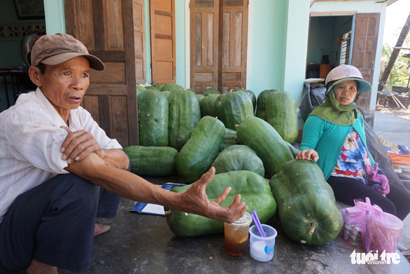 Two farmers with their crop of giant winter melons in Chanh Trach Village, My Tho Commune, Phu My District, in the south-central province of Binh Dinh.  Photo: Ngoc Diep / Tuoi Tre