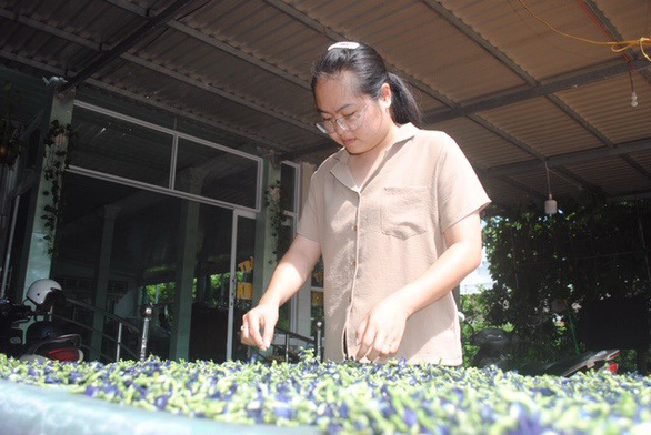 Vietnamese biology teacher makes tea from flowers in Mekong Delta's flower hub