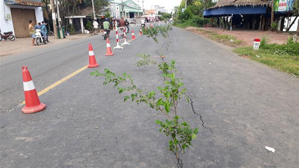 The cracks are marked with tree branches. Photo: Vietnam News Agency