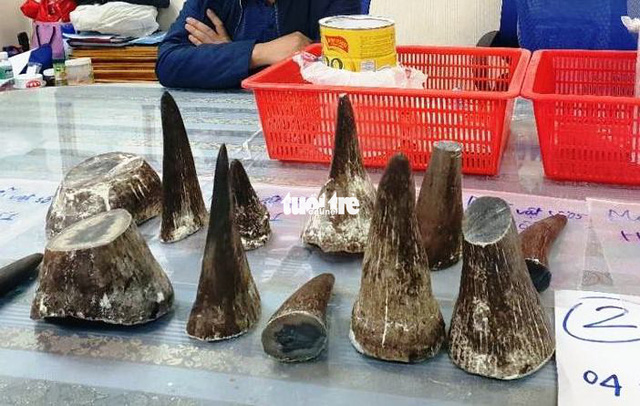 Vietnamese toddler suffers severe poisoning after drinking rhino horn powder