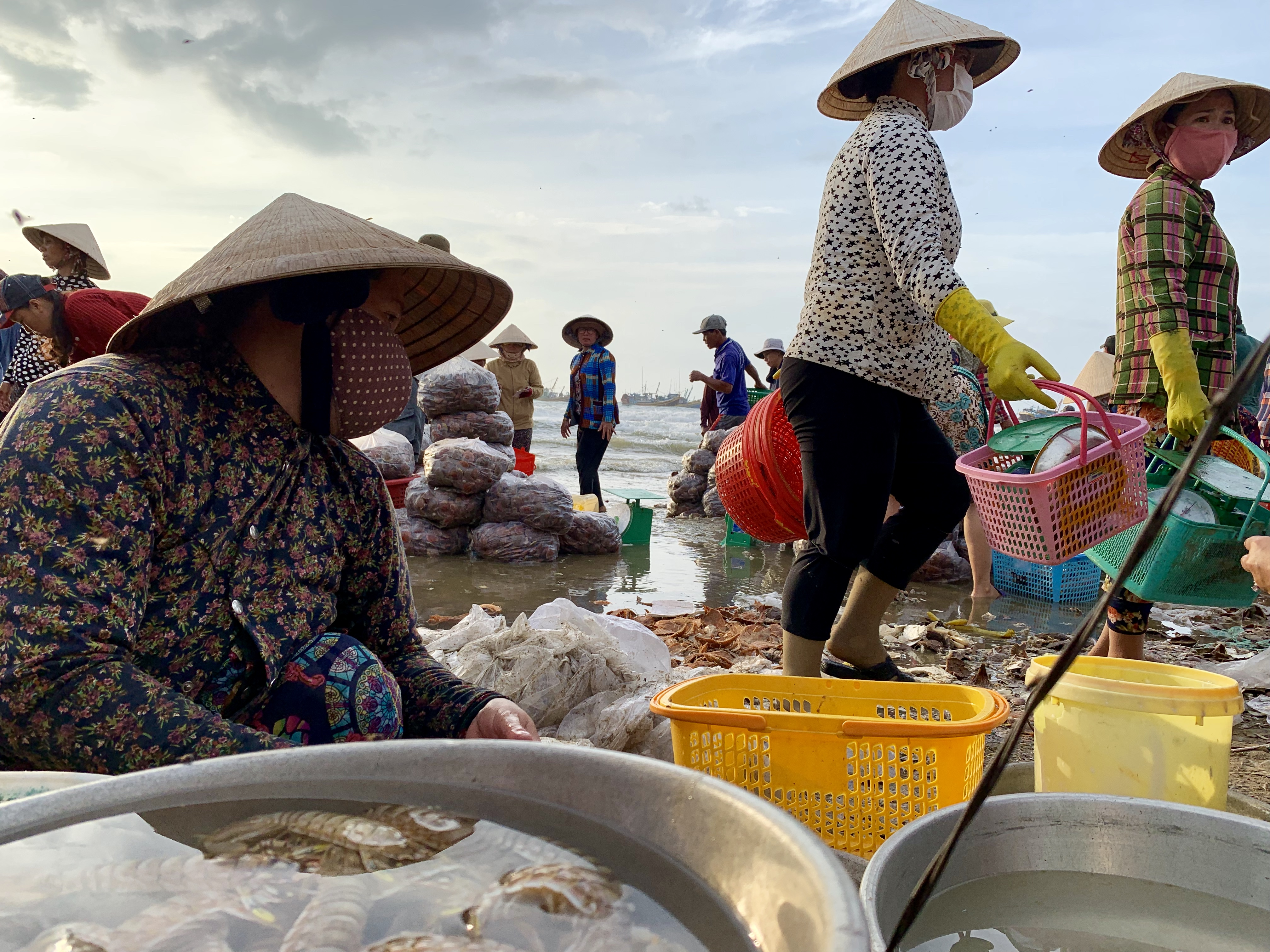 Merchants trade seafood at a local fishing village in Mui Ne, Vietnam July 31, 2019. Photo: Tran Phuong / Tuoi Tre