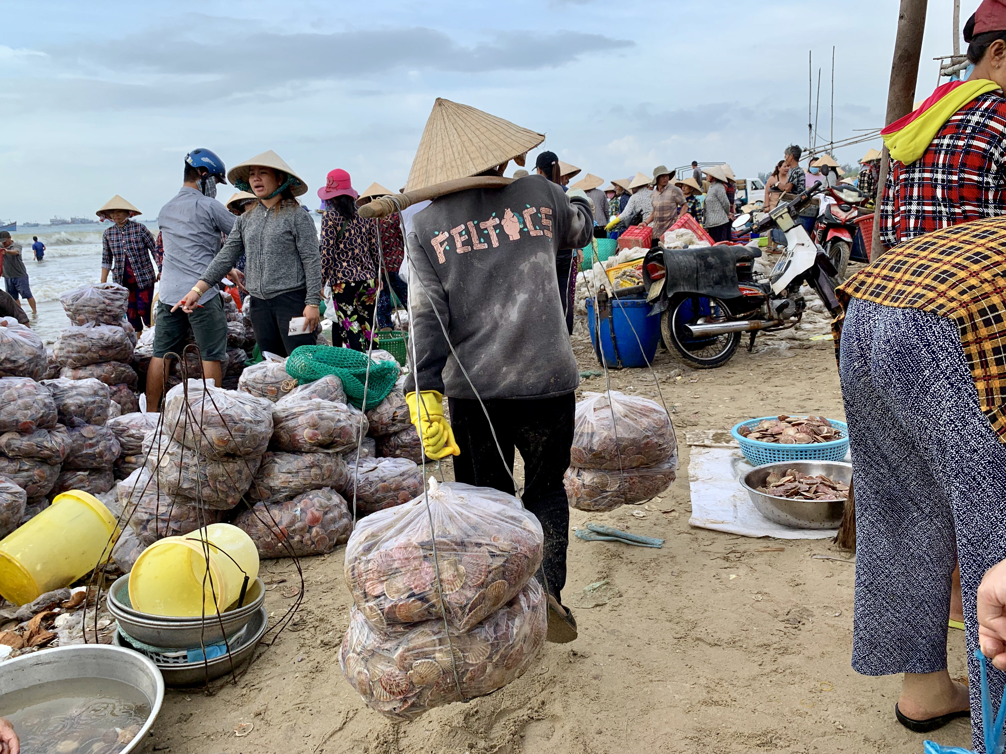 Merchants trade seafood at a local fishing village in Mui Ne, Vietnam July 31, 2019. Photo: Tran Phuong / Tuoi Tre