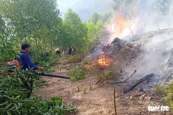 Vietnamese boy sets woods on fire in revenge attacks