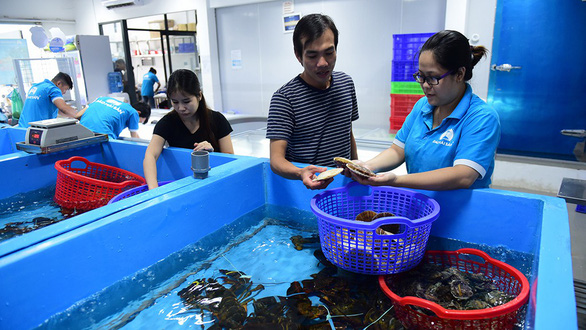 An employee of seafood supplier Dao Hai San in Tan Binh District, Ho Chi Minh City presents a male customer with Japanese oysters costing VND 750,000 (US$32) per kilogram. Photo: Quang Dinh / Tuoi Tre