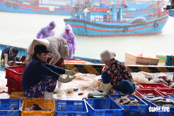 Two Vietnamese women process seafood at a fish port in Khanh Hoa Province. Photo: Thai Thinh / Tuoi Tre