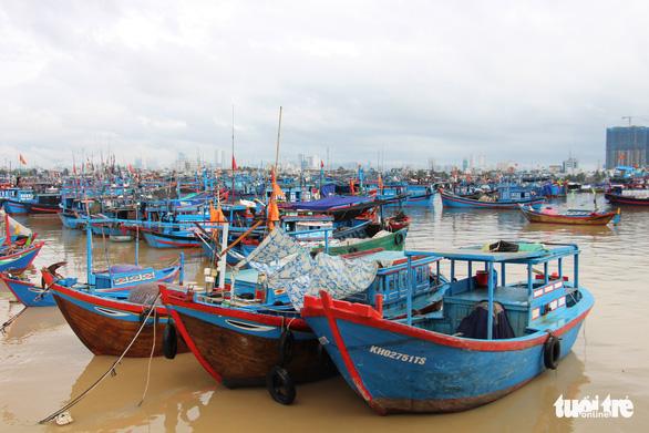 Vietnam mulls seasonal fishing ban to replenish stock