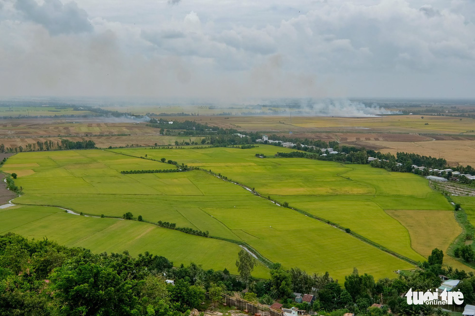 Vietnam's Mekong Delta rice paddies viewed from atop region's highest mountain