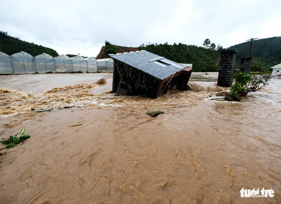 A farm is swept away in Lat Commune, Lam Dong Province. Photo: M.Vinh / Tuoi Tre