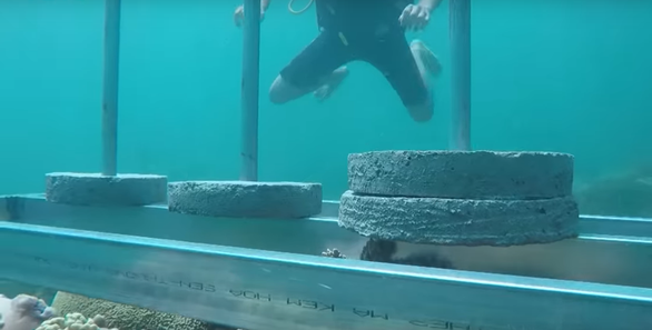 This screenshot from an episode of The Amazing Race Vietnam 2019 captures a heavy structure being place atop a coral reef. Photo: Tuoi Tre