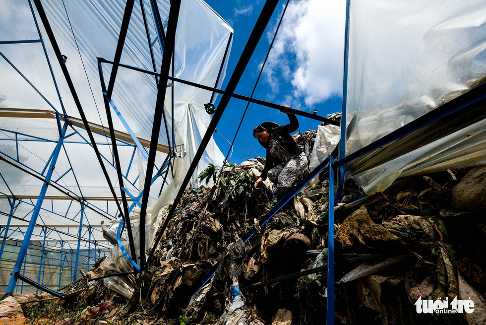 A greenhouse is damaged by the garbage. Photo: Tuoi Tre