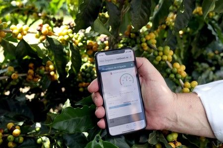 A farmer shows an irrigation management system app on his mobile phone at a coffee plantation in Sao Sebastiao do Paraiso. Photo: Reuters