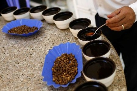 Coffee is being taste at Simexco Dak Lak Limited coffee company in the town of Di An in Binh Duong province. Photo: Reuters