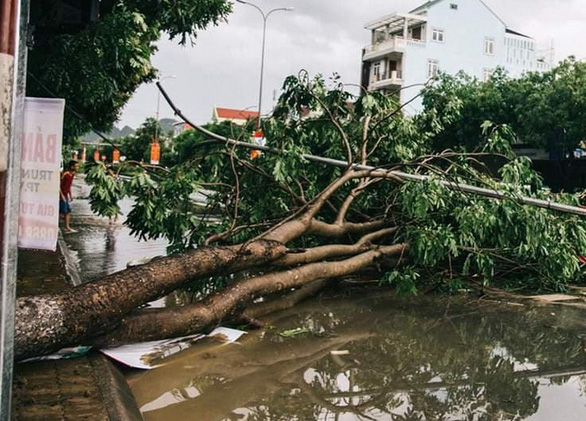 Tropical Storm Podul weakens after making landfall in north-central Vietnam