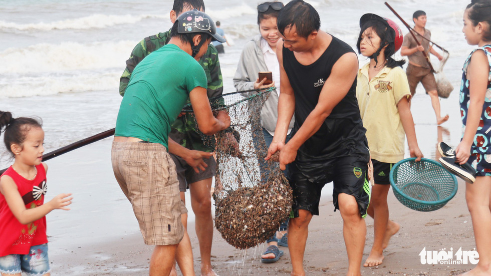 Men carries a net bag of shellfish collected ashore after storm at Cua Lo Beach in north-central province of Nghe An, August 30, 2019. Photo: Doan Hoa / Tuoi Tre