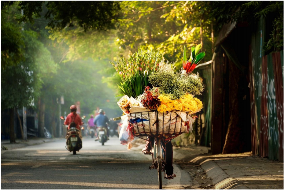 Street vendors carry freshly-picked flowers in the early morning in Hanoi. Photo: Vu Ha
