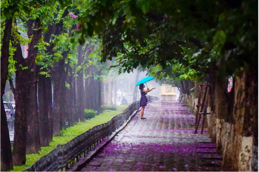 An old but gold street in Hanoi that attracts thousands of people for artistic photo shoots. Photo: Nguyen Linh Giang