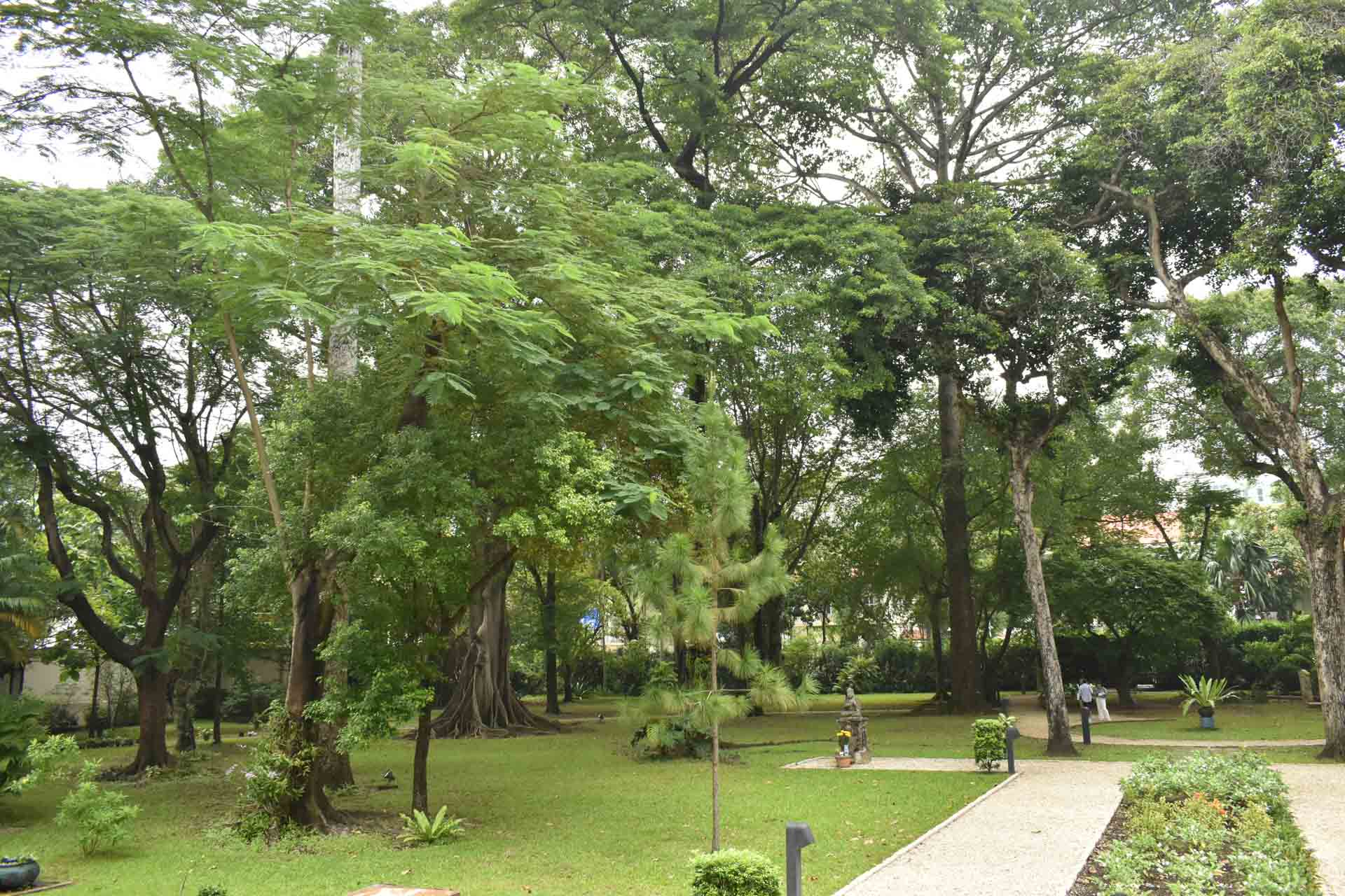 A private park inside the Consulate General of France in Ho Chi Minh City. Photo: Tuan Son / Tuoi Tre News