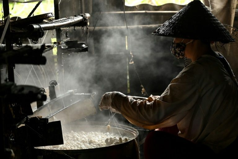 Dozens of workers in Vietnam's silk workshops gently unwind the fibre from silkworm cocoons through clouds of rising steam. Photo: AFP