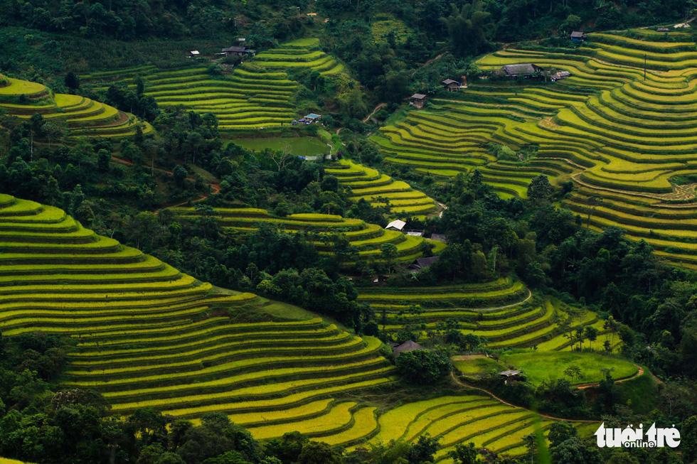 Autumn coats Vietnamese province in fairytale-like beauty
