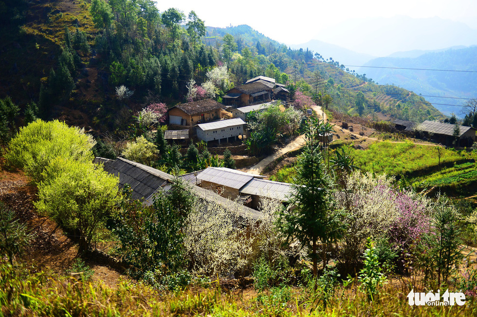 Local houses in Dong Van District, Ha Giang Province, Vietnam. Photo: Quang Dinh / Tuoi Tre