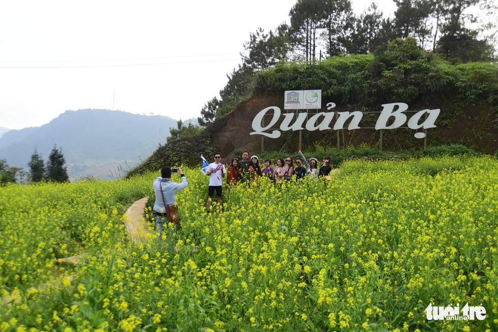 Visitors pose for a photo among a field of lettuce flowers in Quan Ba District, Ha Giang Province, Vietnam. Photo: Quang Dinh / Tuoi Tre
