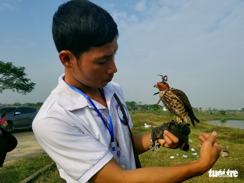Trainer Hoang Hien handles a raptor during the 5th Northern Vietnam Birds of Prey Contest in Hanoi, October 27, 2019. Photo: Ha Thanh / Tuoi Tre