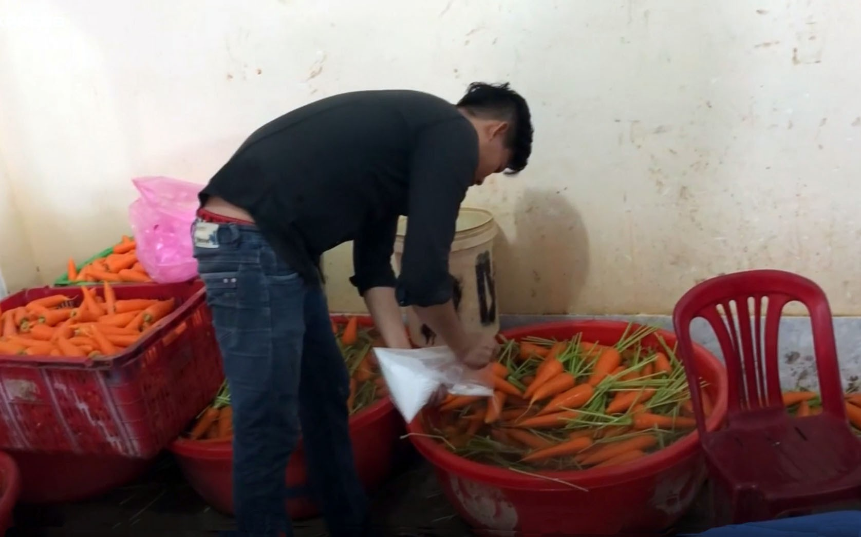 Sang soaks carrots in chemicals at his facility in Thu Duc District during a crime scene reconstruction. Photo: Nhan Hau / Tuoi Tre
