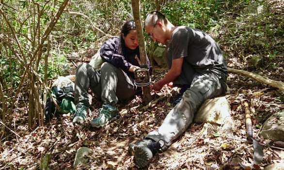 Scientists set camera traps in a forest in the southern part of Vietnam. Photo: Global Wildlife Conservation