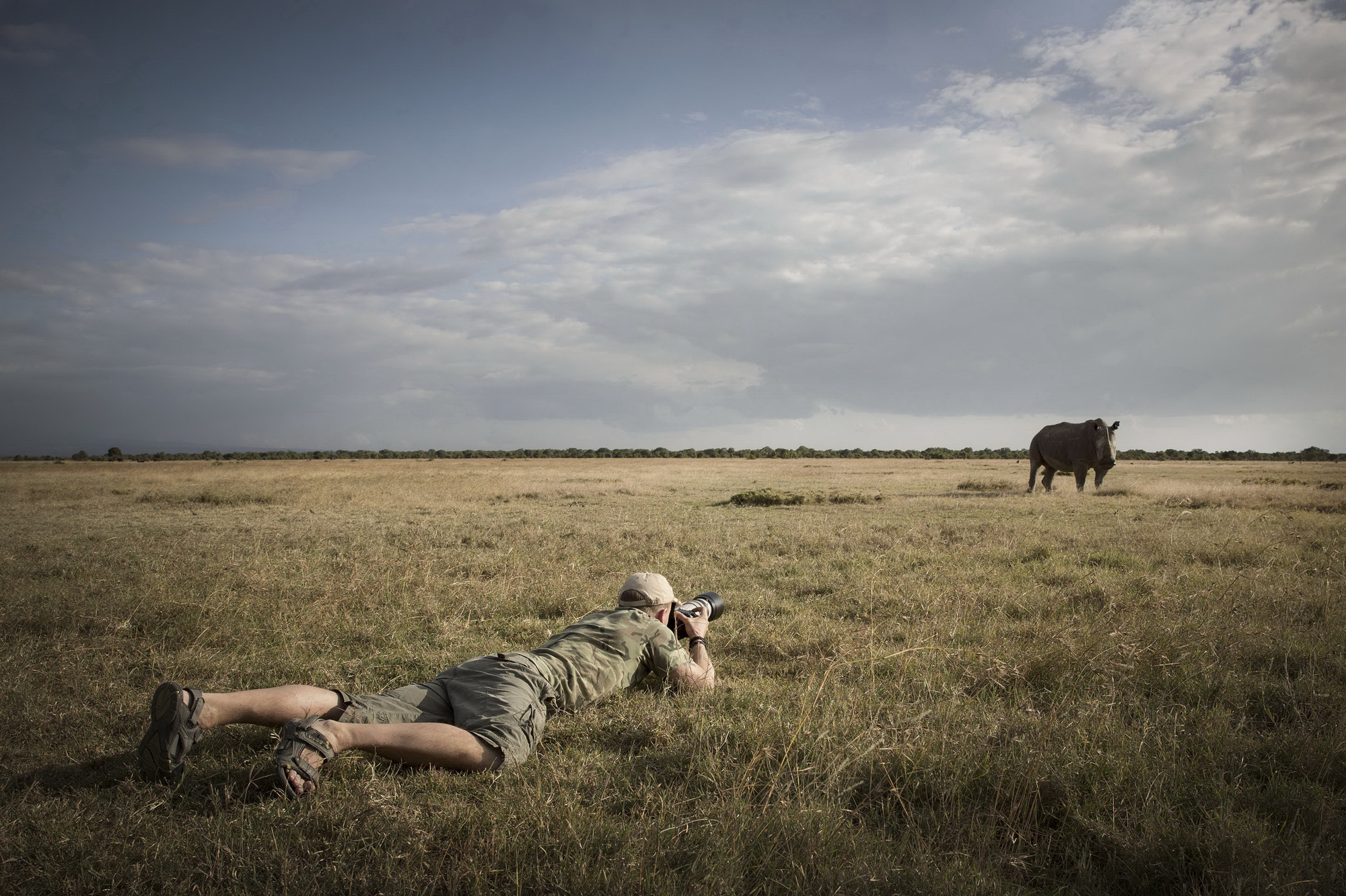 Spread love, not fear: Swedish photographer on wildlife conservation