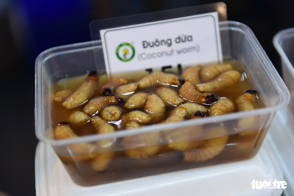 Coconut worm on sale at the international food festival held at the Youth Cultural House in District 1, Ho Chi Minh City, November 14, 2019. Photo: Quang Dinh / Tuoi Tre