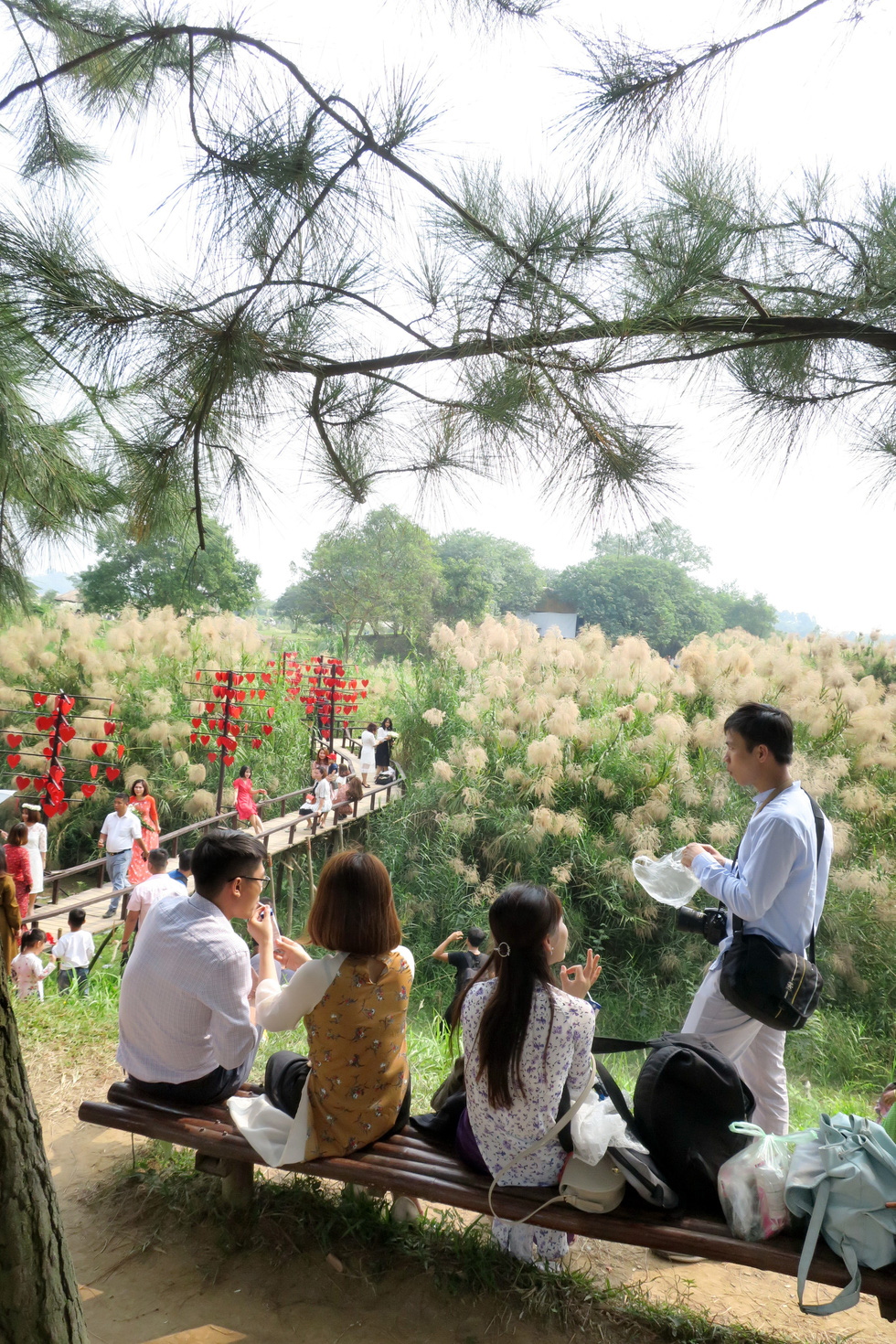Couples take a break after taking photos at a daisy garden in Hanoi. Photo: T.T.D. / Tuoi Tre