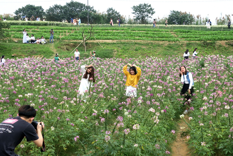 Young women pose for a photo with daisies in Hanoi. Photo: T.T.D. / Tuoi Tre