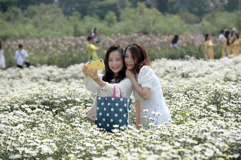 Daisy fields draw crowds in Hanoi as flowers blossom in chilly weather