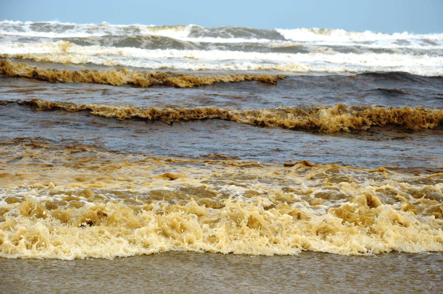 Seawater turns dark near central Vietnam economic zone