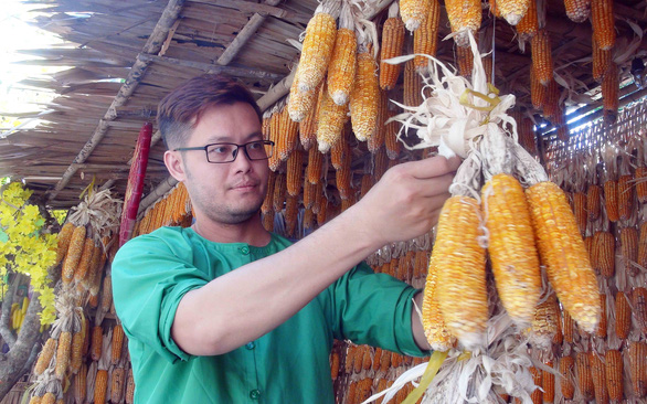 Nguyen Minh Nhat is seen at a booth displaying corn at a decorated alley in Cai Rang District, Can Tho City, Vietnam in December 2019. Photo: M. Tam / Tuoi Tre