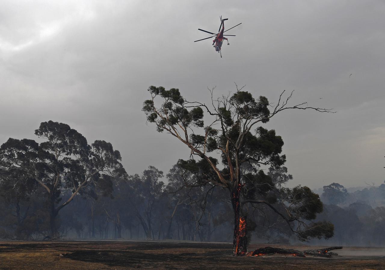 Australia's 'columns of fire' force mass evacuation, claim ninth life
