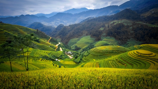 Vietnam's Mu Cang Chai should top 2020 travel list: CNBC