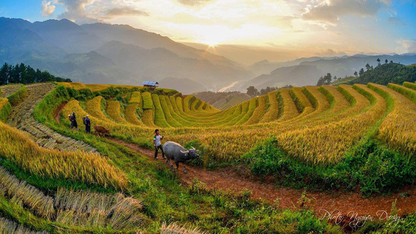 Rice terraces in Mu Cang Chai District in the northern province of Yen Bai. Photo:  Nguyen Duong / Tuoi Tre
